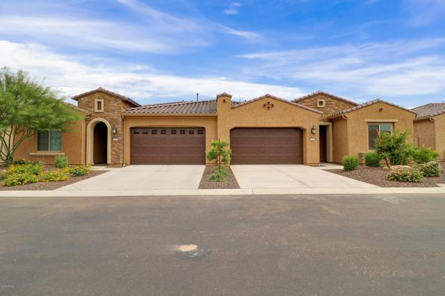 16937 W Holly Street, Goodyear, AZ 85395 (MLS #5940007) :: Kortright Group - West USA Realty