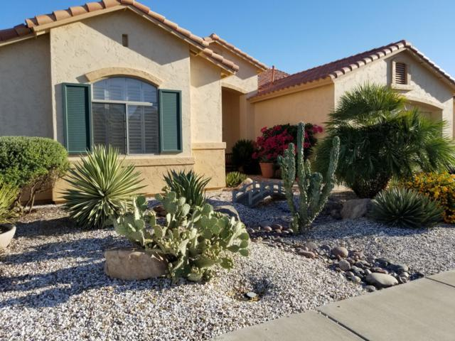 17847 W Addie Lane, Surprise, AZ 85374 (MLS #5940012) :: The Results Group