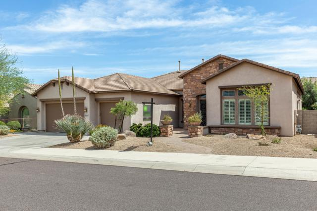 26865 N 90TH Avenue, Peoria, AZ 85383 (MLS #5940022) :: The Laughton Team