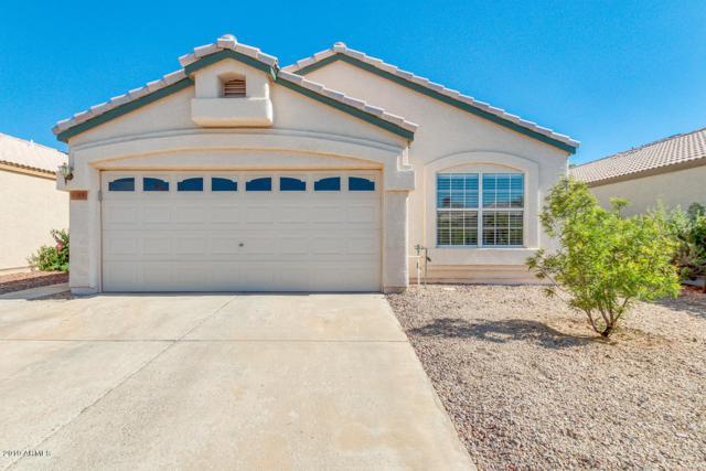 4389 E Hartford Avenue, Phoenix, AZ 85032 (MLS #5940046) :: Yost Realty Group at RE/MAX Casa Grande