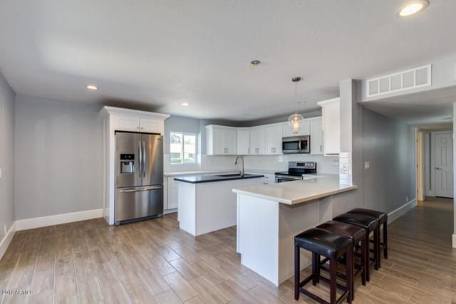 3401 N 83RD Street, Scottsdale, AZ 85251 (MLS #5940050) :: Brett Tanner Home Selling Team
