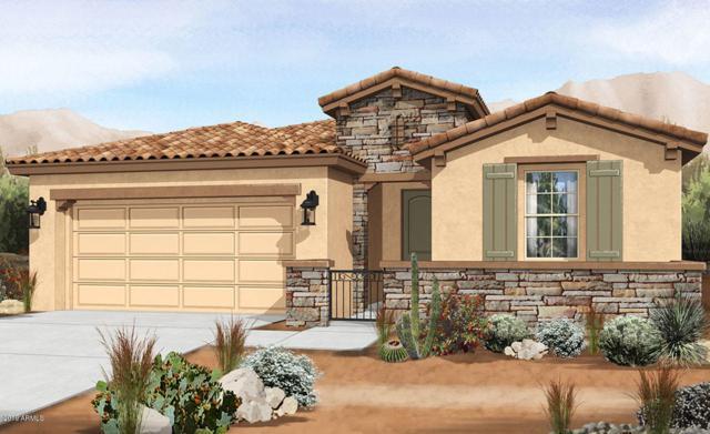 9741 E Tumeric Avenue, Mesa, AZ 85212 (MLS #5940056) :: Yost Realty Group at RE/MAX Casa Grande