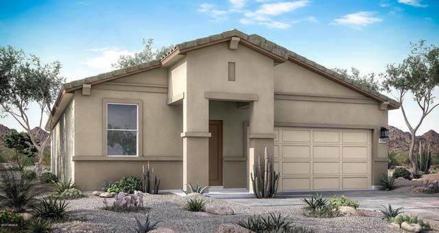 3247 W Carter Road, Phoenix, AZ 85041 (MLS #5940058) :: Lux Home Group at  Keller Williams Realty Phoenix