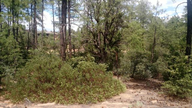 1802 E Senna Point, Payson, AZ 85541 (MLS #5940063) :: RE/MAX Excalibur