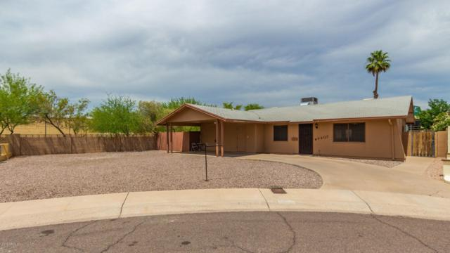 4407 S Alder Drive, Tempe, AZ 85282 (MLS #5940086) :: Revelation Real Estate