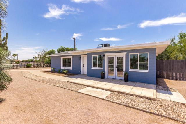428 S Meridian Road, Apache Junction, AZ 85120 (MLS #5940095) :: The Results Group