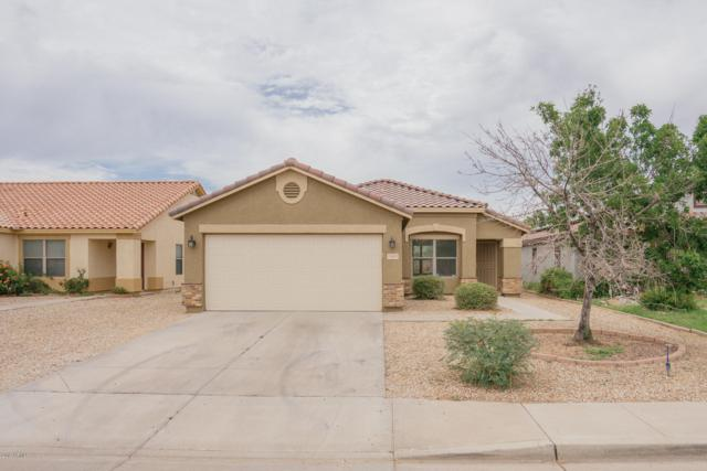 15552 W Port Au Prince Lane, Surprise, AZ 85379 (MLS #5940096) :: The Results Group