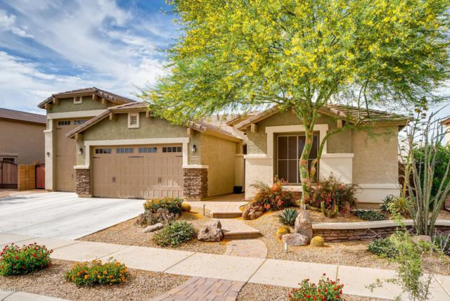 17816 W Windrose Drive, Surprise, AZ 85388 (MLS #5940097) :: The Results Group
