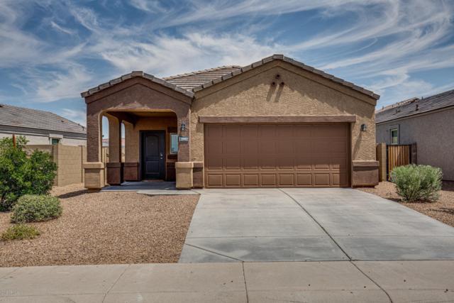 29992 W Mitchell Avenue, Buckeye, AZ 85396 (MLS #5940099) :: Riddle Realty