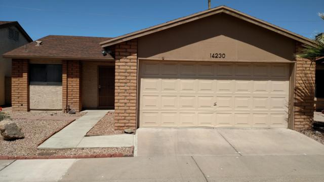 14230 N 26TH Drive, Phoenix, AZ 85023 (MLS #5940122) :: Revelation Real Estate