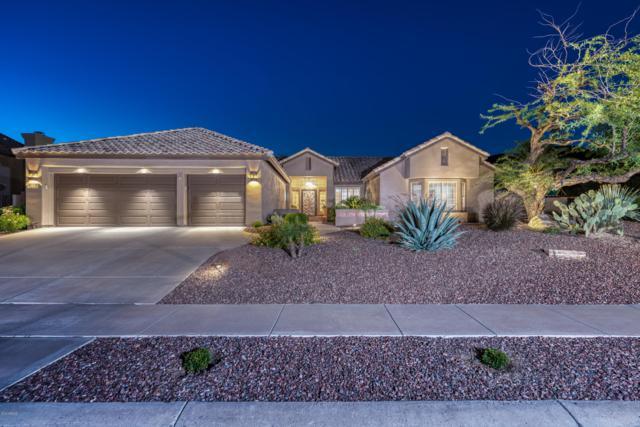 2450 E Desert Flower Lane, Phoenix, AZ 85048 (MLS #5940138) :: The Results Group