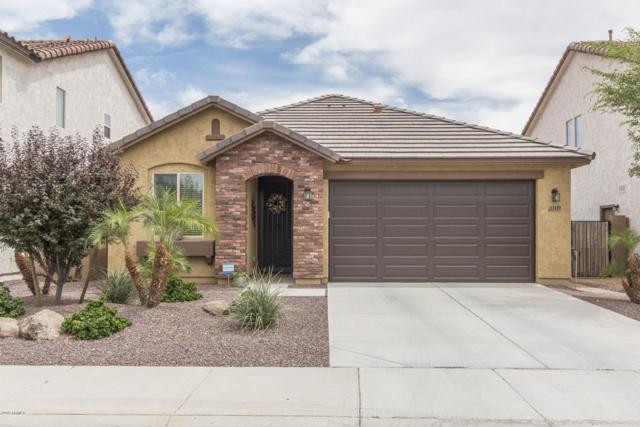 13129 W Briles Road, Peoria, AZ 85383 (MLS #5940160) :: The Pete Dijkstra Team