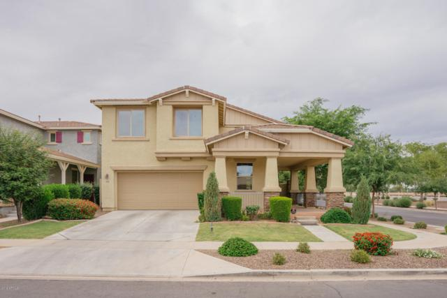 14736 W Surrey Drive, Surprise, AZ 85379 (MLS #5940164) :: The Results Group