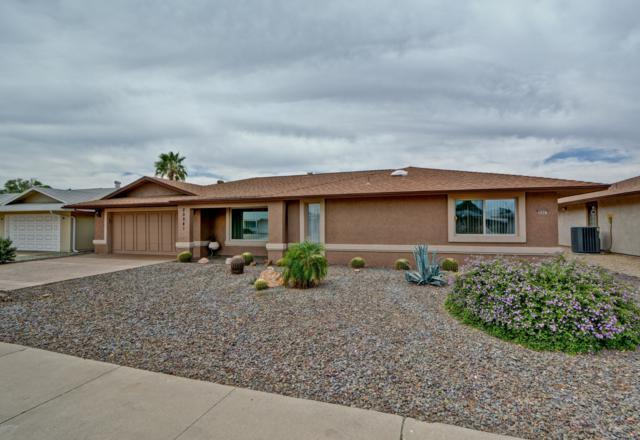 20041 N Welk Drive, Sun City, AZ 85373 (MLS #5940169) :: Occasio Realty