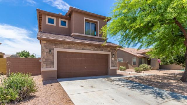 43929 W Palo Ceniza Way, Maricopa, AZ 85138 (MLS #5940180) :: Revelation Real Estate