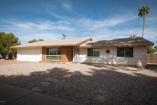 8937 N 18TH Avenue, Phoenix, AZ 85021 (MLS #5940187) :: The AZ Performance Realty Team