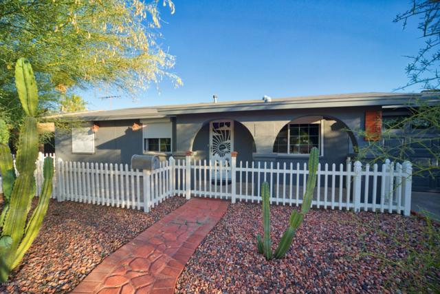 3207 E Hearn Road, Phoenix, AZ 85032 (MLS #5940189) :: Lux Home Group at  Keller Williams Realty Phoenix