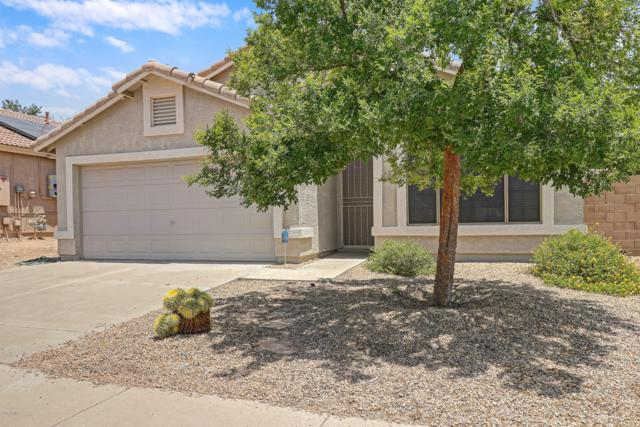 25823 N 65th Drive, Phoenix, AZ 85083 (MLS #5940210) :: The Laughton Team