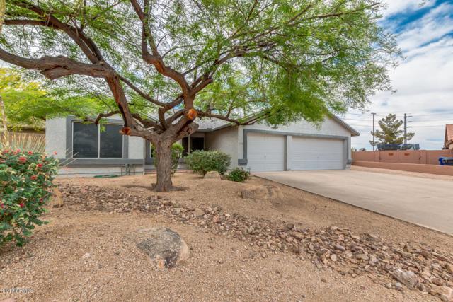 7558 E Greenway Circle, Mesa, AZ 85207 (MLS #5940224) :: The Results Group