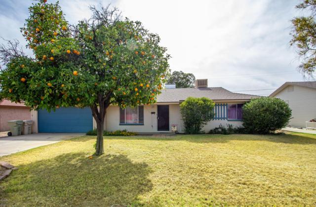 8116 N 55TH Drive, Glendale, AZ 85302 (MLS #5940231) :: Yost Realty Group at RE/MAX Casa Grande