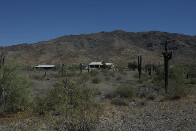 2429 W Olnwy Avenue, Phoenix, AZ 85041 (MLS #5940235) :: Revelation Real Estate