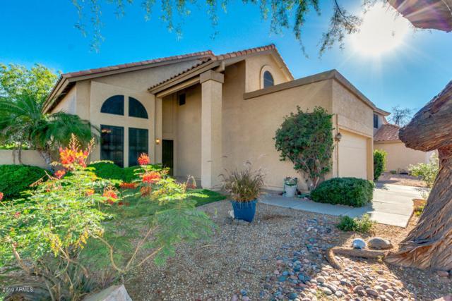 1701 W Ivanhoe Street, Chandler, AZ 85224 (MLS #5940242) :: Occasio Realty