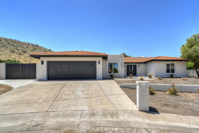 239 E Dahlia Drive, Phoenix, AZ 85022 (MLS #5940244) :: The W Group
