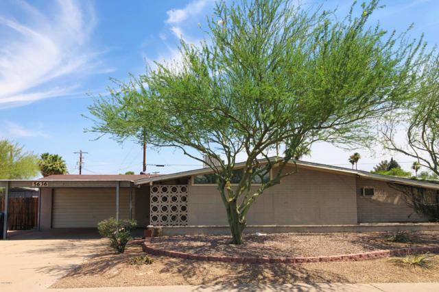 5636 W Indian School Road, Phoenix, AZ 85031 (MLS #5940249) :: Occasio Realty