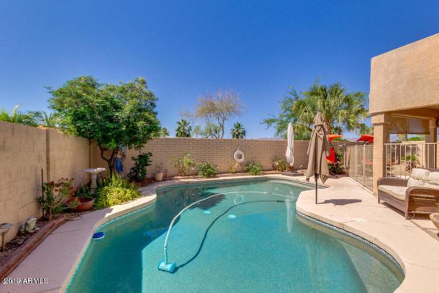 1721 W South Fork Drive, Phoenix, AZ 85045 (MLS #5940252) :: neXGen Real Estate