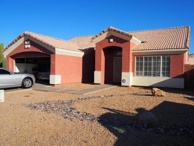 8531 W Vernon Avenue, Phoenix, AZ 85037 (MLS #5940256) :: Yost Realty Group at RE/MAX Casa Grande
