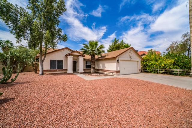 3721 W Geronimo Street, Chandler, AZ 85226 (MLS #5940257) :: Revelation Real Estate