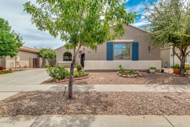4734 E Cloudburst Drive, Gilbert, AZ 85297 (MLS #5940263) :: Revelation Real Estate
