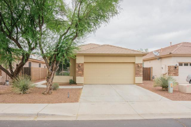 17004 W Lundberg Street, Surprise, AZ 85388 (MLS #5940264) :: The Results Group