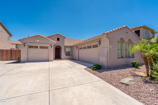 17859 W Gelding Drive, Surprise, AZ 85388 (MLS #5940277) :: The Results Group
