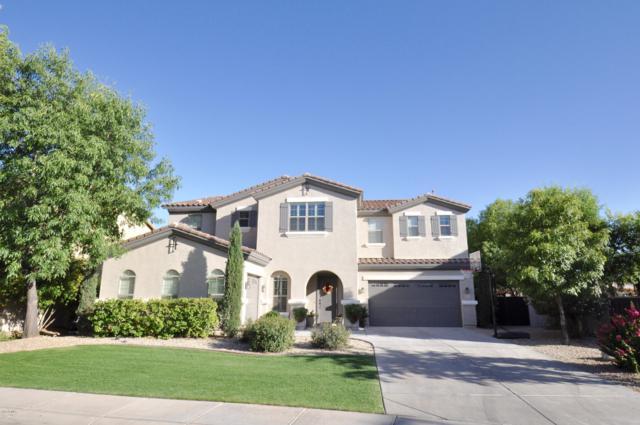 3115 E Castanets Drive, Gilbert, AZ 85298 (MLS #5940295) :: The Results Group