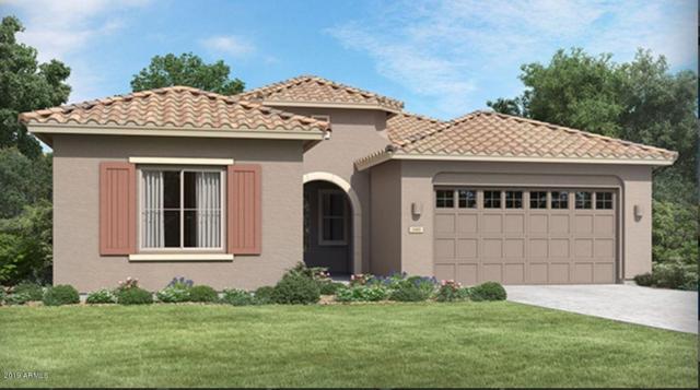 21549 E Pecan Court, Queen Creek, AZ 85142 (MLS #5940305) :: Yost Realty Group at RE/MAX Casa Grande