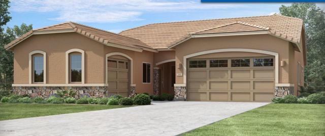 21475 E Sunset Drive, Queen Creek, AZ 85142 (MLS #5940310) :: Yost Realty Group at RE/MAX Casa Grande