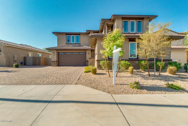 14705 W Reade Avenue, Litchfield Park, AZ 85340 (MLS #5940311) :: The Pete Dijkstra Team