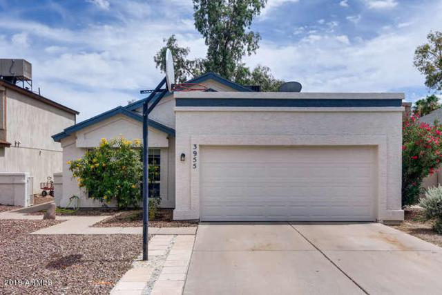 3955 W Cindy Street, Chandler, AZ 85226 (MLS #5940324) :: The Results Group