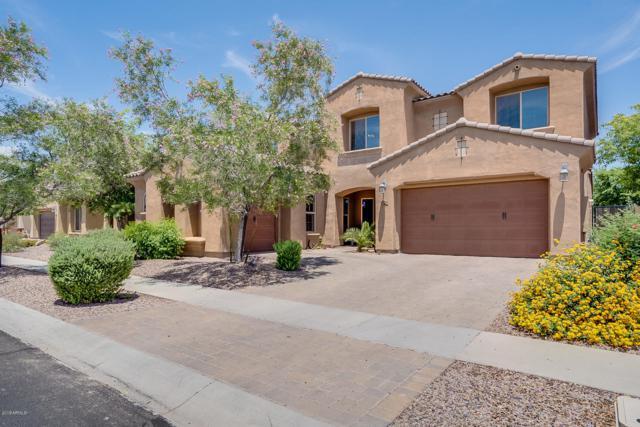 2936 E Blue Sage Road, Gilbert, AZ 85297 (MLS #5940330) :: The Results Group