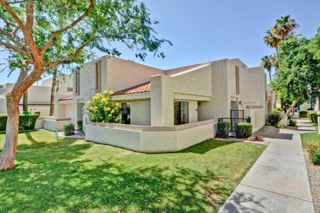 748 E Morningside Drive, Phoenix, AZ 85022 (MLS #5940340) :: The Results Group