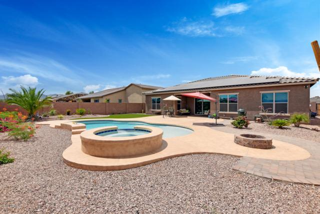 18585 W Coolidge Street, Goodyear, AZ 85395 (MLS #5940345) :: Occasio Realty
