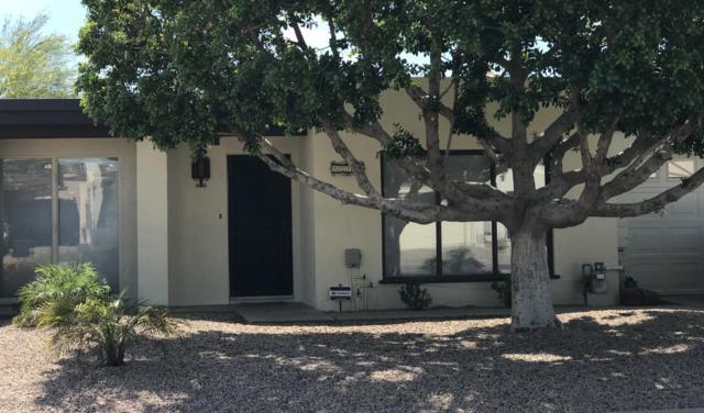 211 Bahia Lane W, Litchfield Park, AZ 85340 (MLS #5940354) :: Yost Realty Group at RE/MAX Casa Grande