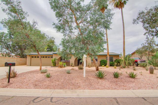 16212 N 38TH Street, Phoenix, AZ 85032 (MLS #5940359) :: The Kenny Klaus Team