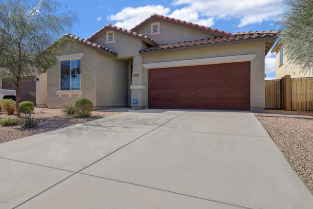 11750 W Chase Lane, Avondale, AZ 85323 (MLS #5940366) :: Brett Tanner Home Selling Team