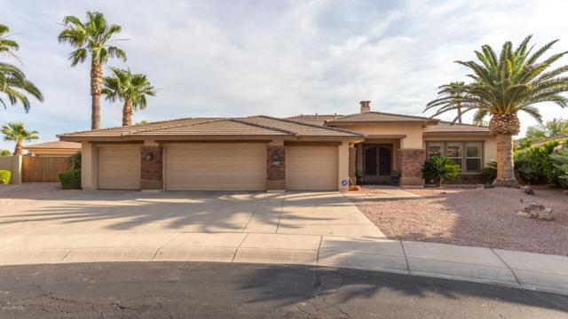 447 E Vinedo Lane, Tempe, AZ 85284 (MLS #5940372) :: Revelation Real Estate