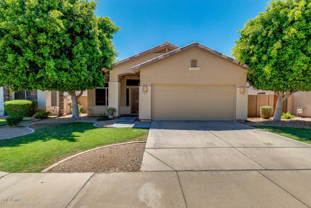 3600 S Hollyhock Place, Chandler, AZ 85248 (MLS #5940384) :: Lifestyle Partners Team