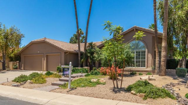10070 E Bloomfield Road, Scottsdale, AZ 85260 (MLS #5940393) :: The Results Group