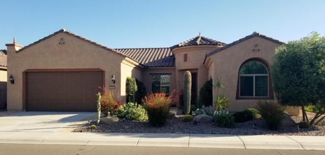 7415 W Willow Way, Florence, AZ 85132 (MLS #5940413) :: The Results Group