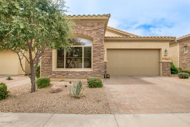 14215 W Harvard Street, Goodyear, AZ 85395 (MLS #5940434) :: Cindy & Co at My Home Group